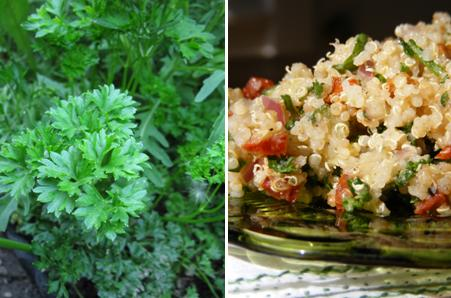 Parsley - Sun dried tomato tabouleh _ ForkFingersChopsticks